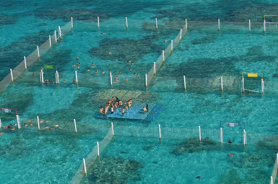 Те кто хочет познакомится с морскими обитателями поближе должны посетить Маринариум